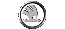 logo Skoda BW