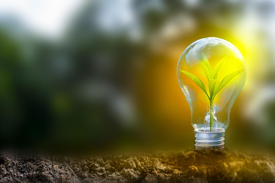 Obnovitelná energie žárovka